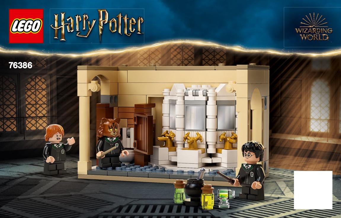 Hogwarts: Polyjuice Potion Mistake
